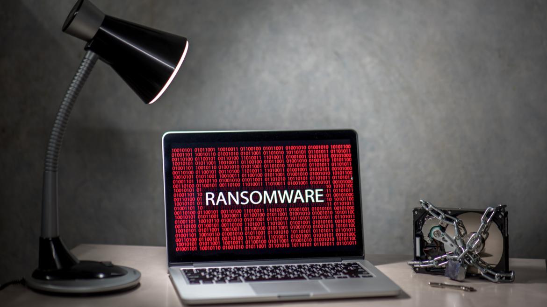 Cibercrime tem crescimento exponencial