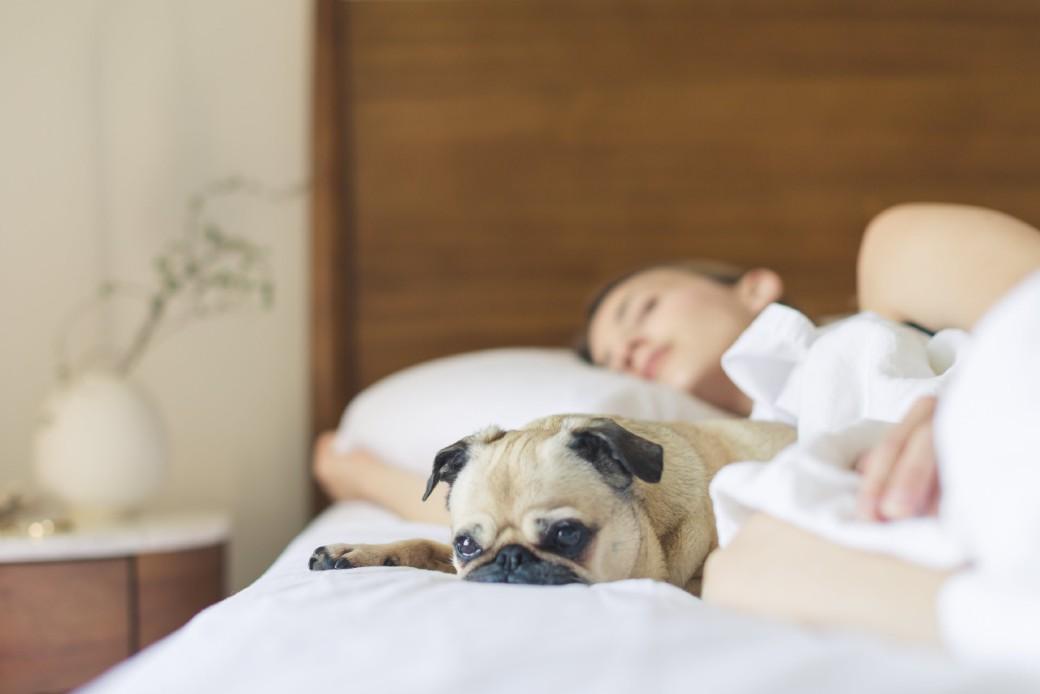 Seu sono é um excelente arsenal imunológico