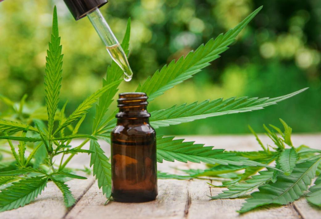 Mercado online de cannabis prospera na pandemia