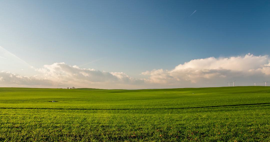 Agroindústria: riscos e benefícios da engenharia genética