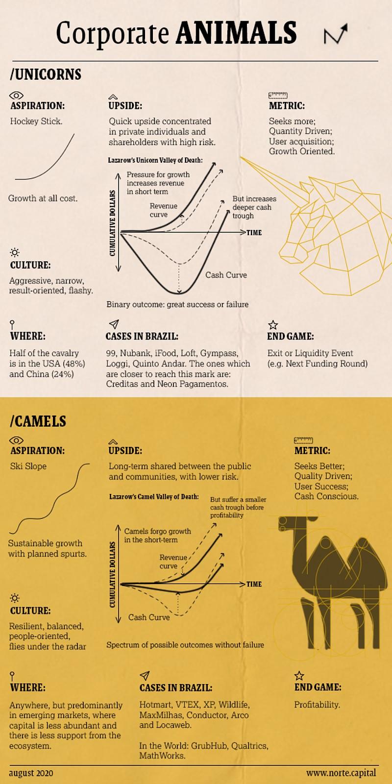 infográfico camelo x unicórnio