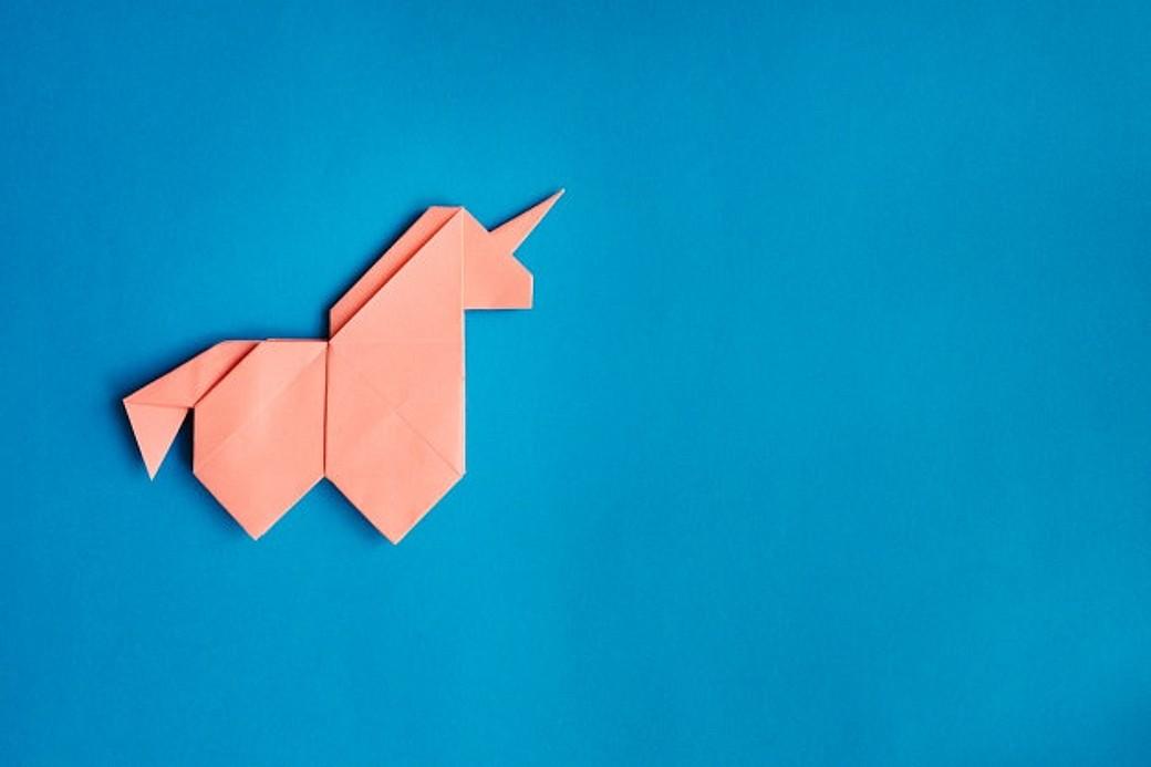 Você saberia dizer as diferenças entre unicórnios e camelos?