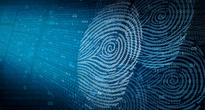 Três estudos revelam que a privacidade passou a ser obrigatória, de fato