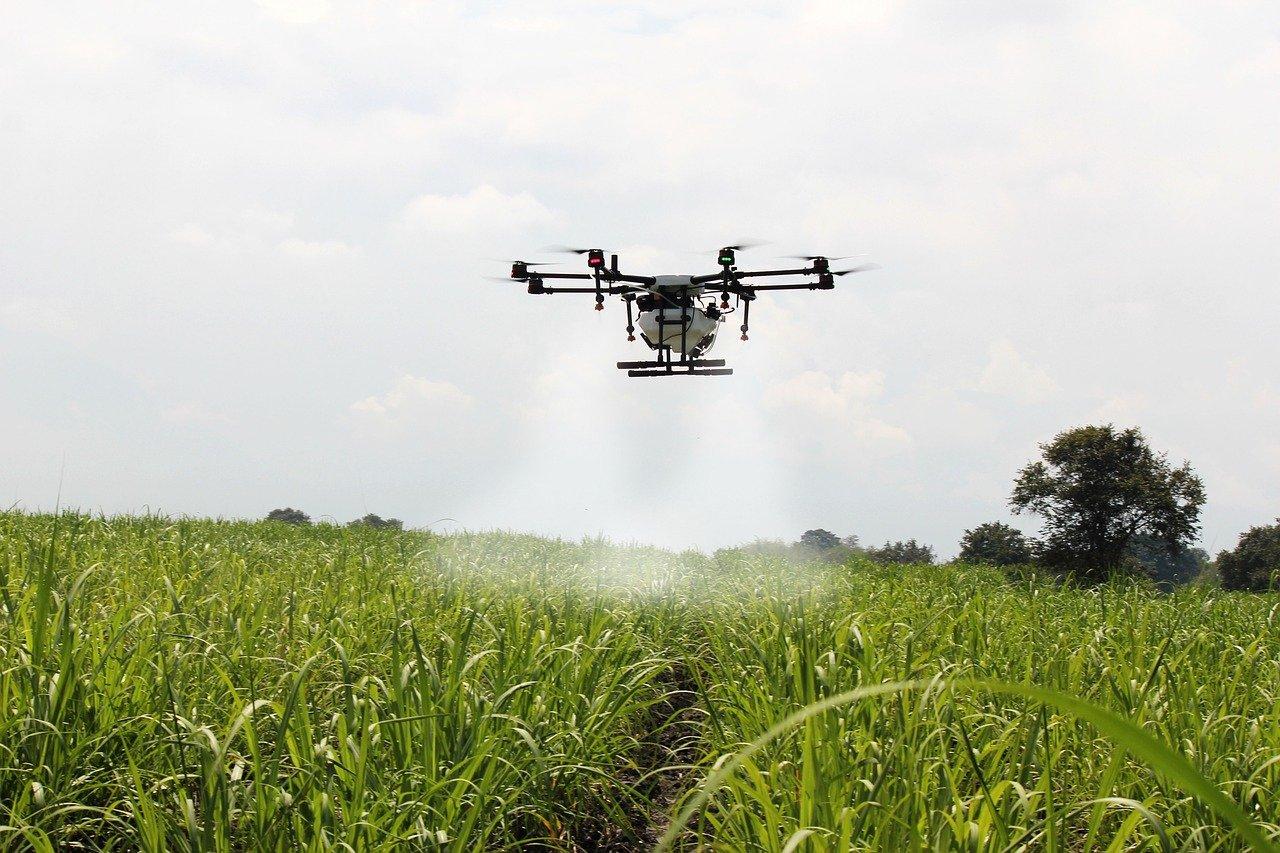 Setores agro e automotivo são prioridades para IA no Brasil
