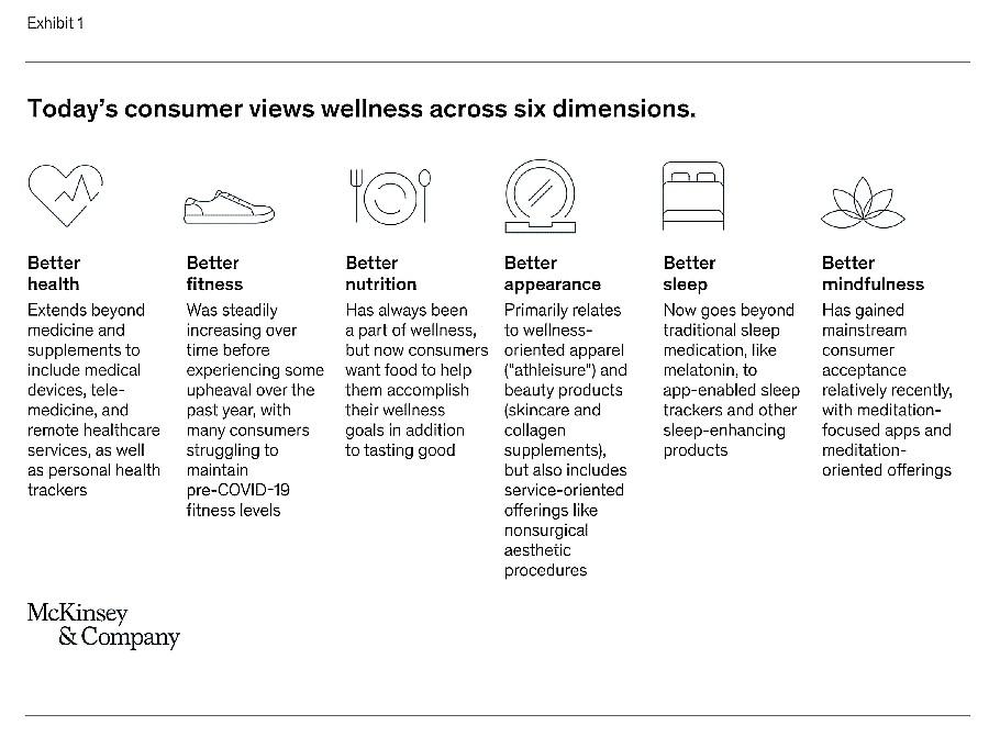 gráfico mostra as categorias do mercado de bem-estar