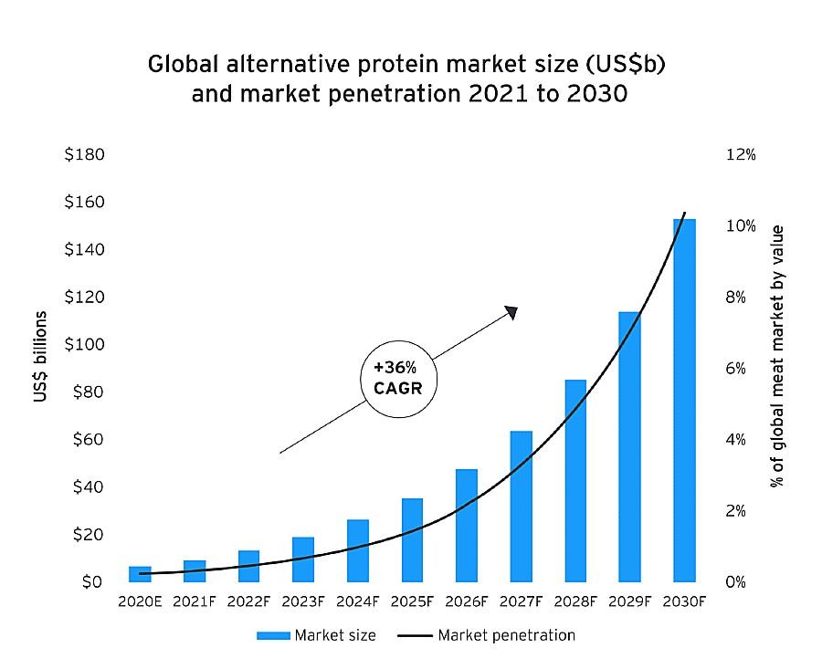 gráfico mostra mercado global de carne alternativa