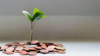 Novos fundos de Venture Capital diversificam opções para startups