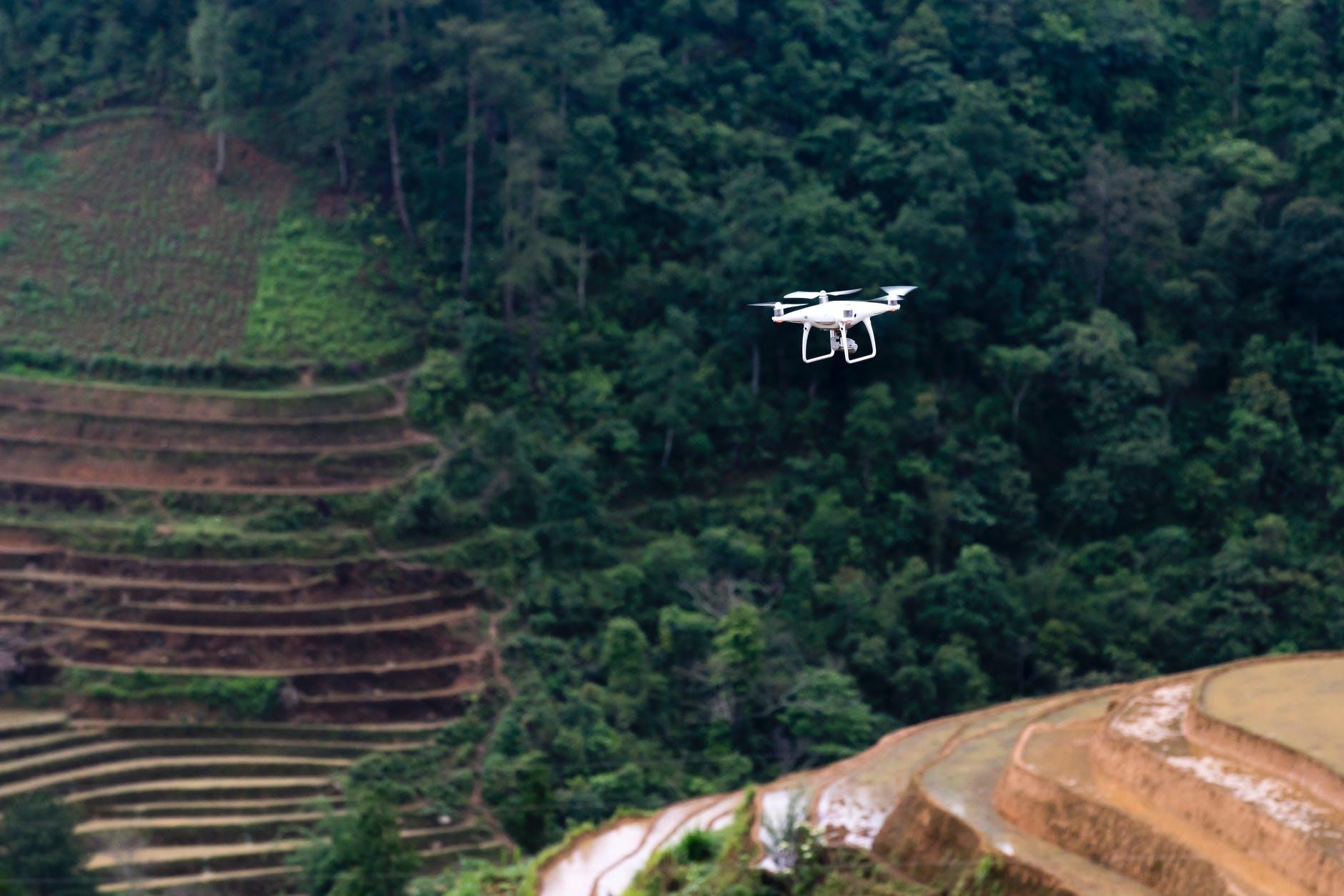 Agtechs: tecnologia de controle tem mais apoio do ecossistema