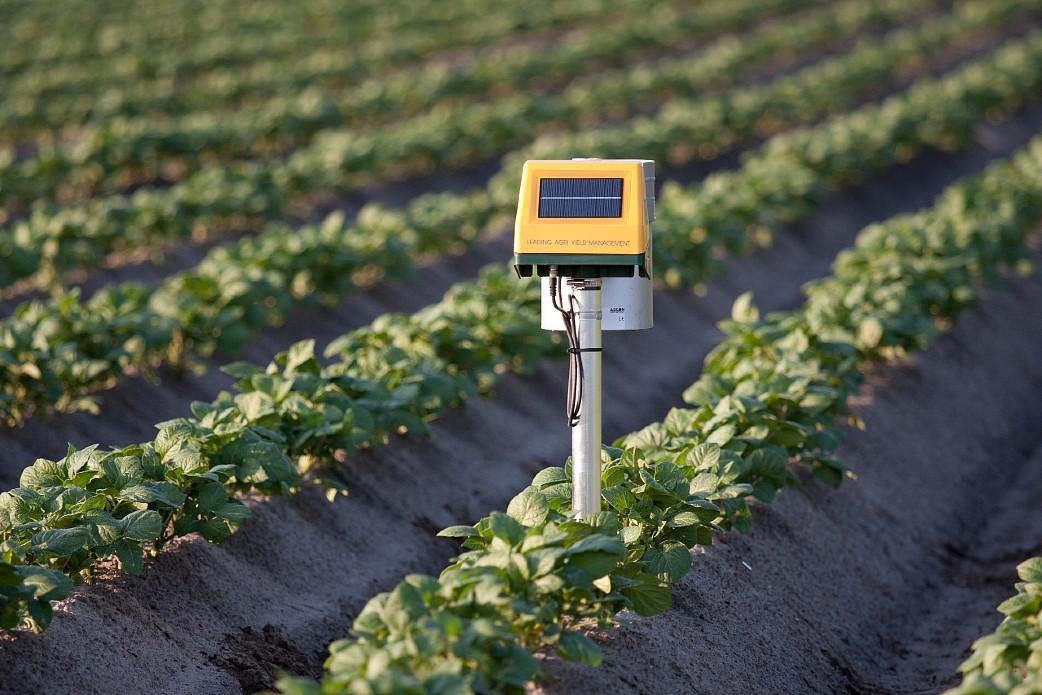 Tecnologia é fundamental para uma agricultura mais sustentável