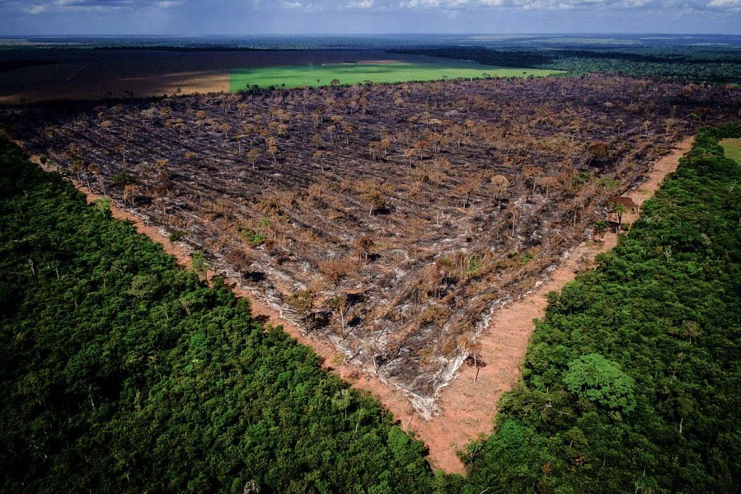 Crise climática: Brasil tem muito a contribuir, mas precisa correr