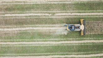 Imagem mostra um trator tratando uma área plantada